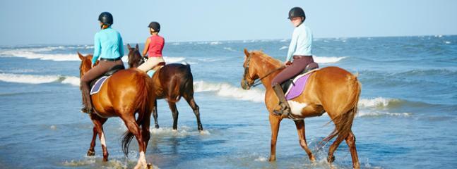 À cheval sur la plage