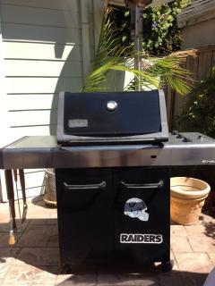 Weber gas BBQ.