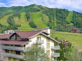 WALK TO SLOPES/or Ski Right across from base of mountians REAL DEAL/Elegant all updates one bedroom