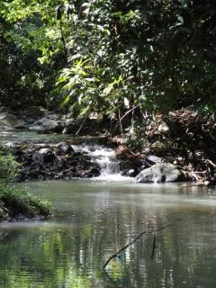 Mamiku River below rear of house