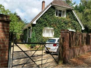 Deluxe Quaint Rustic house near Bournemouth