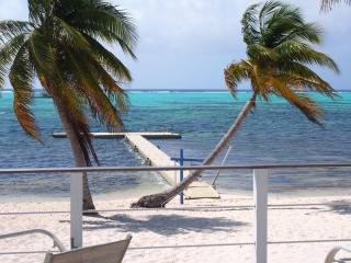 Sir Turtle Beach Villas - Ocean Front Villas - 8 b, Little Cayman