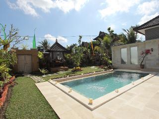 2 Bedroom Private pool at ubud