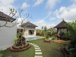 2 Bedroom Private pool at ubud