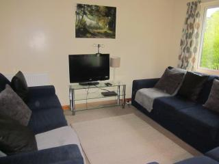 Comfortable 4 bed detached holiday lodge, Callington