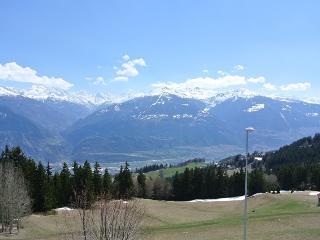 Clairière Barzettes A13 - 041, Crans-Montana