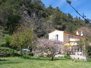 La Font d'Orange, La Roquebrussanne