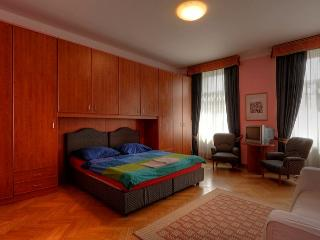 Nice Spacious apartment in Prague