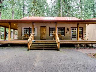Charming dog-friendly cabin w/private hot tub, deck & bikes! Walk to the river!, Rhododendron