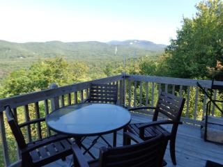 Beautiful Condo with Mountain View Near Ski Areas, Campton