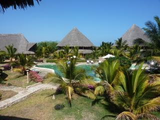 palm tree beach - ocean beach resort, Malindi