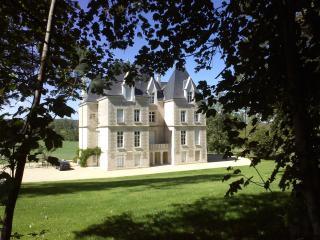 Château de Savigny, Vouneuil-sur-Vienne