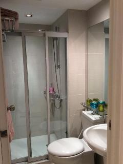 Shower has hot/cold water pressure, glass sliding doors, bowl with bidet spray and sink