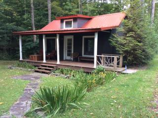 Charming Streamside Cabin...min To Belleayre Ski, Pine Hill