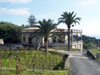 Villa Grifunera, Santa Venerina