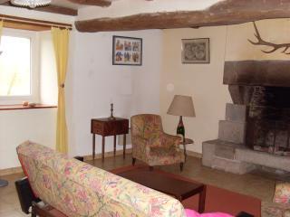 le salon et sa grande cheminée, bois fourni