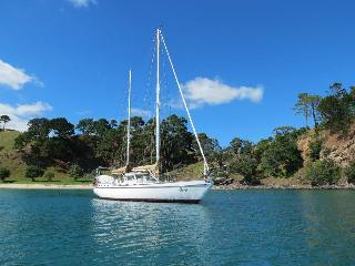 Sailing Boat In Lisbon