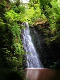 ENJOY A WALK OR DRIVE TO FALLING FOSS