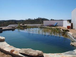 This is our chemical free and beautiful natural swimming pool.