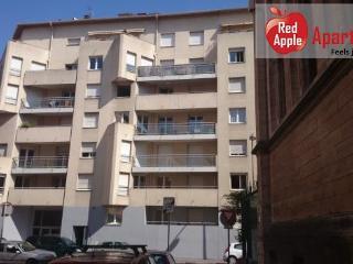1 bedroom open plan flat with terrace - 1369, Lyon