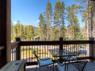 Award-winning mountain house with close access to slopes and hot tub (amazing views, high end everything) - White Cap Lodge