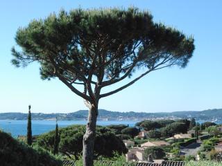 Bastide - Vue mer - Prestations haut de gamme, Sainte-Maxime