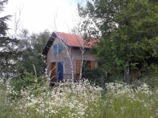 Enjoy comfortable accommodation in the woods, Novi Sad