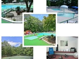Seasonal access to 3 private clubhouses, swimming pools, tennis, gym and more!