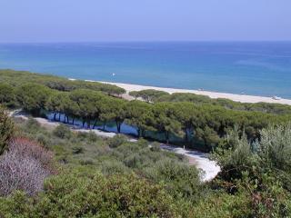 In Sardegna sistemazione confortevole