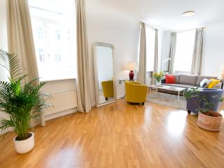 Spacious 2-Bedrooms Apartment - Town hall sq.