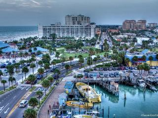 1BR Clearwater Avalon Apartment on groundfloor