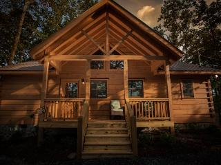 Cozy 2 Bedroom Georgia Vacation Cabin, Ellijay