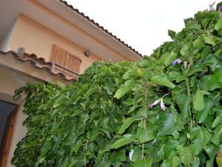 Splendida residenza per la tua vacanza in Sardegna