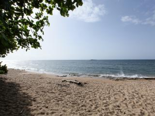 Private Beachfront Chalet, Now with 10% off!, Vega Baja