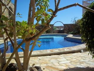 The beautiful pool, with a quick glimpse of the stunning surrounding gardens