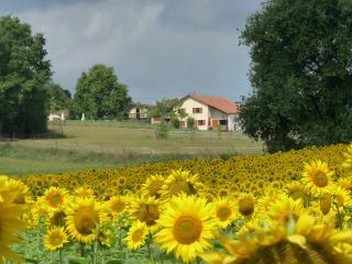 Domaine Mounoy, ambiance rurale et decontractee