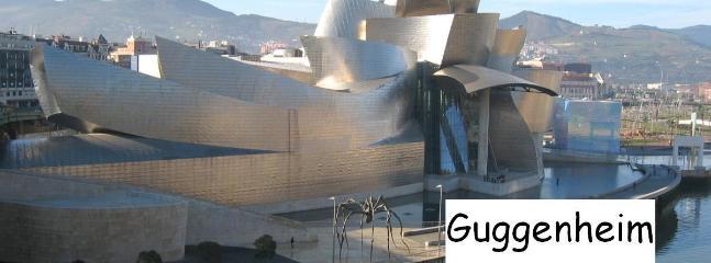 Guggenheim Museum en Bilbao (Frank Gehry)