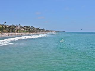 Jan-Feb $149/night. Surf Condo near Trestles beach, San Clemente