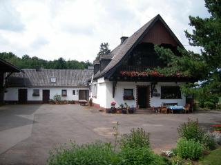 Vacation Apartment in Prüm - 1012 sqft, petting animals (horses), high-quality furnishings (# 57), Orlenbach