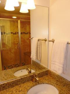 New master bathroom remodel.