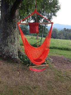 Relax in the hammock and enjoy the view