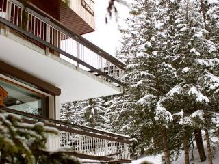 Courchevel-Rental full apartment