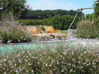 Guillemassot, spacious, comfy, well equipped converted barn set within the vines