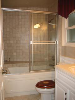 Downstairs Bathroom w/ Jacuzzi tub