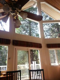 Big Windows with Forested Views
