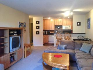 Furnished Quiet Off Street 2Bdr 2 Bath Condo, Boulder