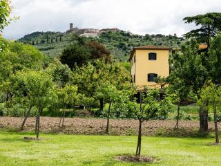 From the park surrounding the cottage, there's a wonderful view of the old town of Cortona