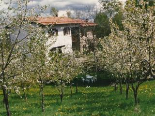 Casa tipica in montagna