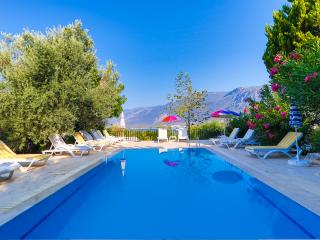 4 PEOPLE SEA & SUNSET VIEW APT. WITH POOL IN KAS