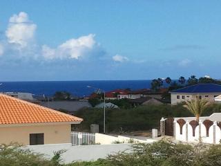 Villa Faviidae, Curaçao